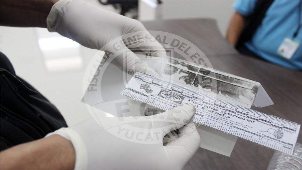 Formulan imputación por posesión de cannabis en Tekax