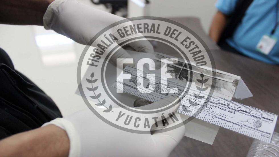 Con localizador a imputados por falsificación de documentos